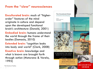 slow neurosciences
